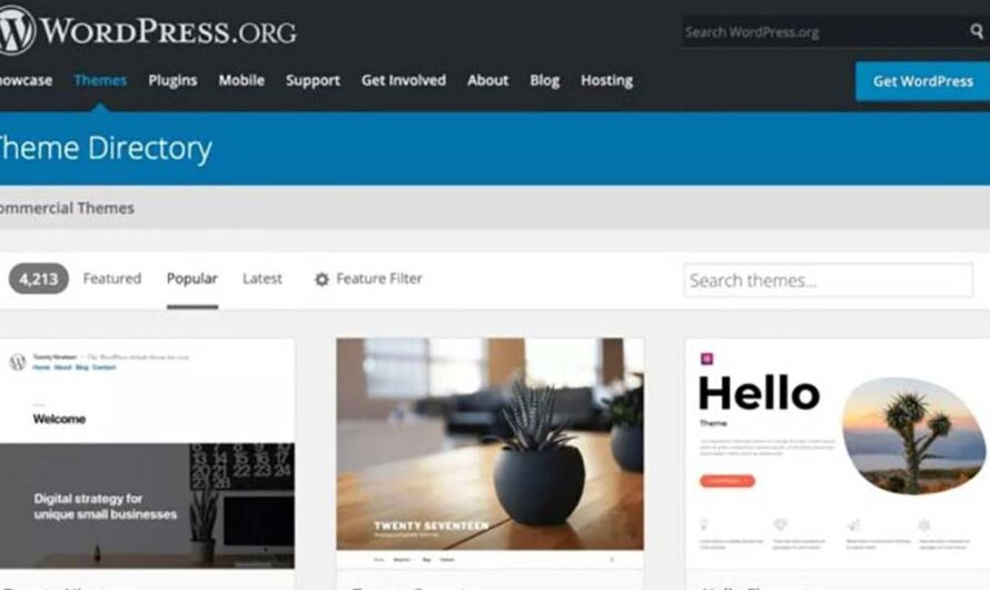 Choosing a Theme for a WordPress E-commerce Site ?