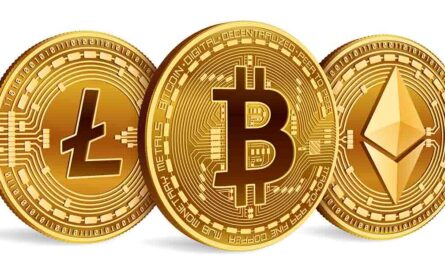 what is Bitcoin and altcoin